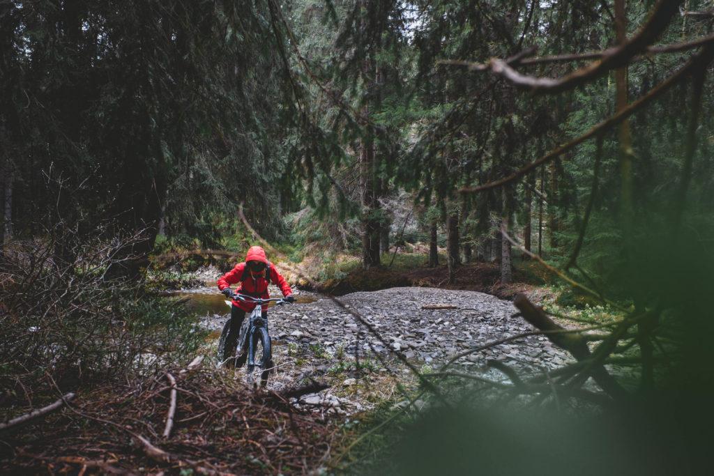 forest biking